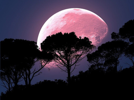 Full Pink SUPERMOON April 7: Top 6 Things to Know