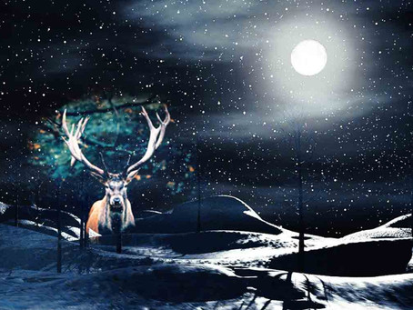 Full Moon December 11: Top 5 Things You Need to Know