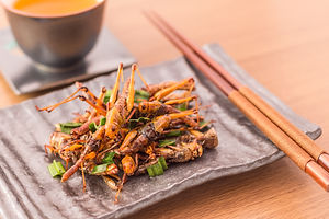 Set of Grasshopper edible insect crispy