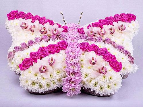 Butterfly - 2003