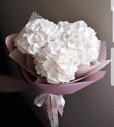 x3 white hydrangea Giftwrapped
