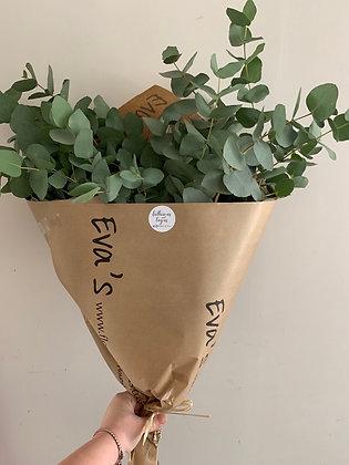 eucalyptus wrap