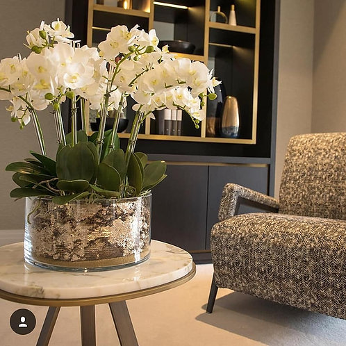 Modern white Luxury Orchid arrangment