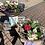 Thumbnail: Florist choice Handtied