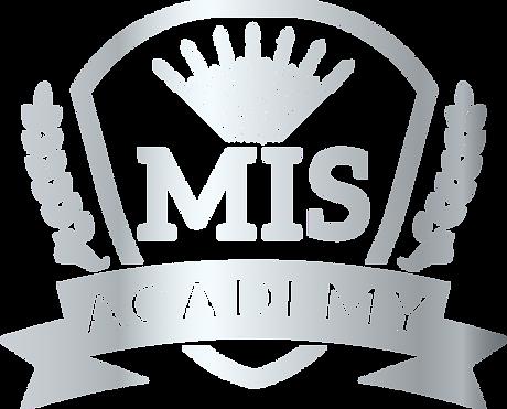 MIS Academy