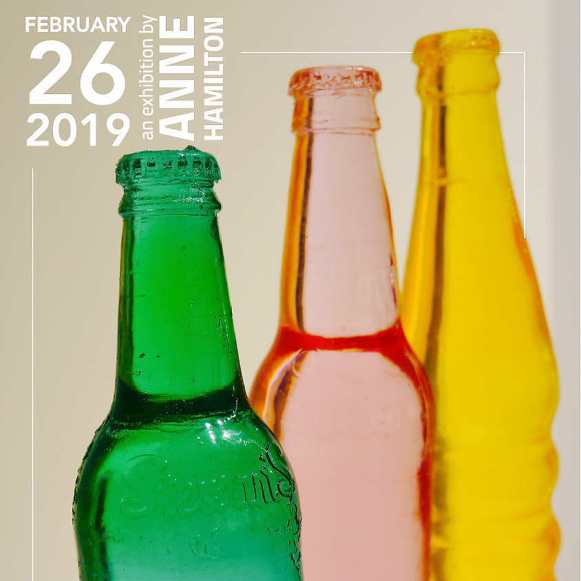 February 26, 2019 by Anne Hamilton