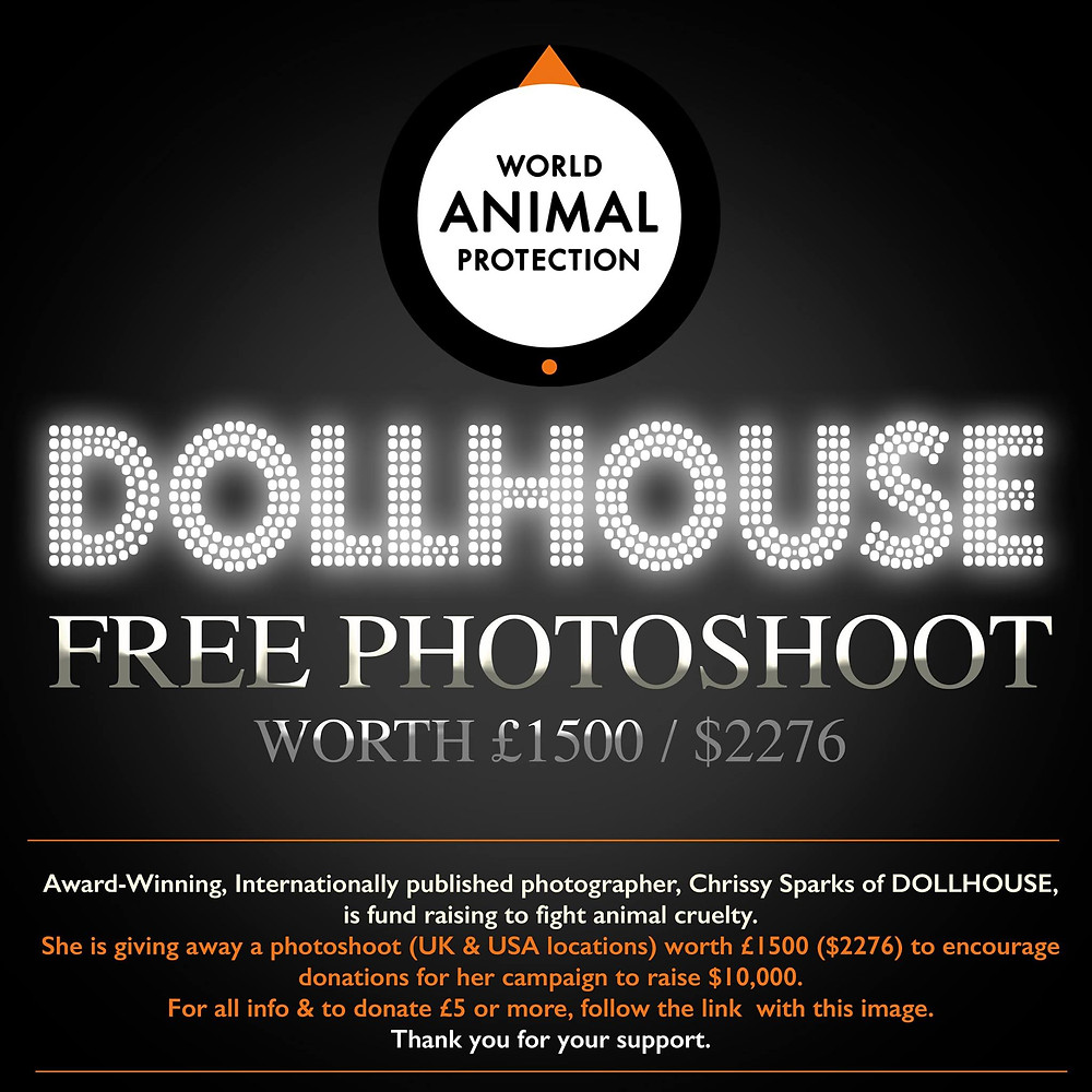 DollHouse Photography supports World Animal Protection Charity