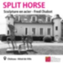 splithorse.jpg