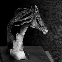 centaure acier