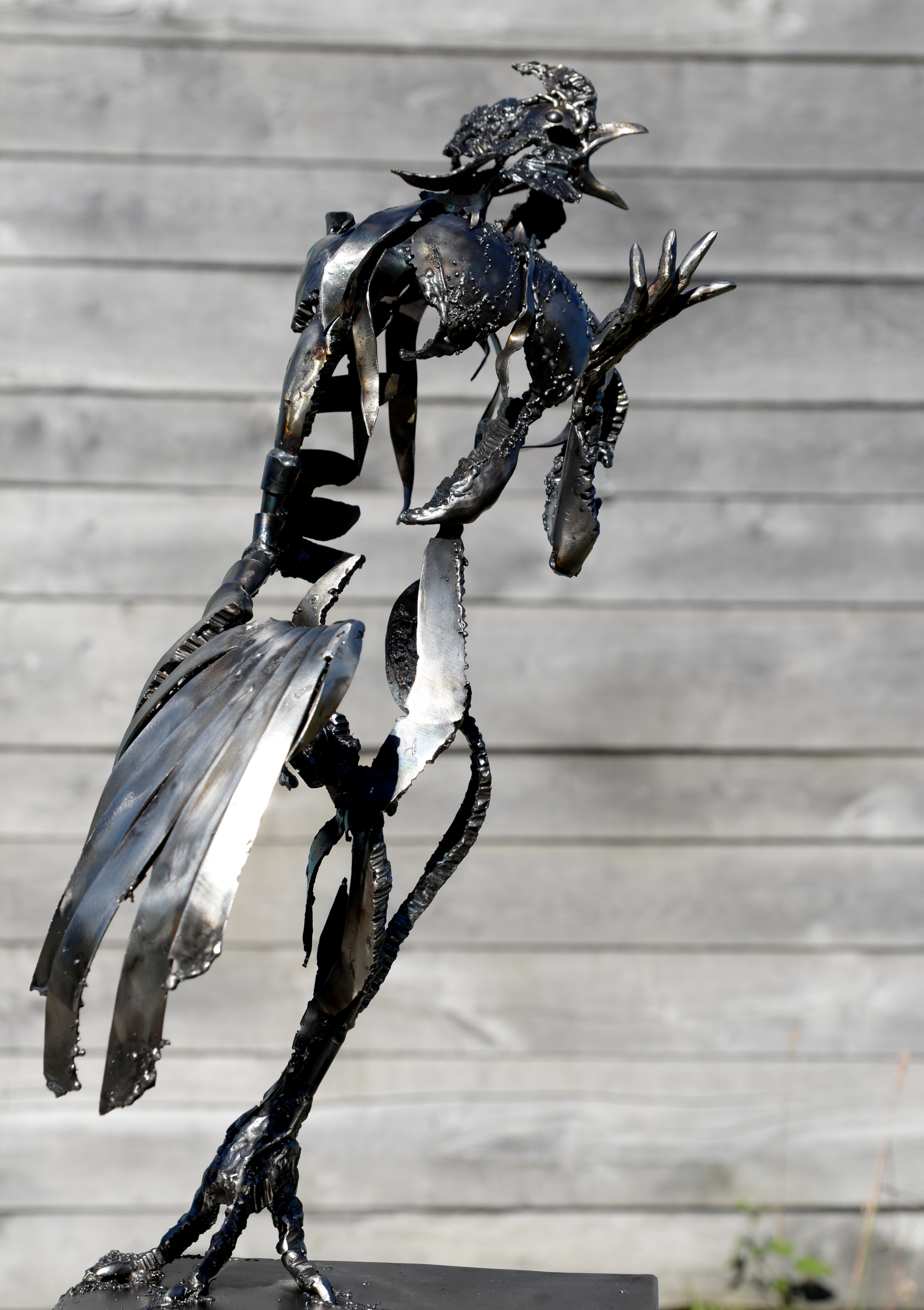 coq métal