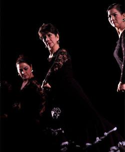 Gravitas in Flamenco
