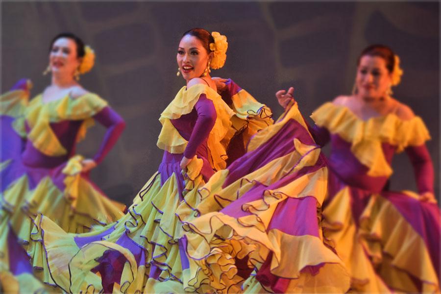 Novedad Flamenca!