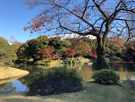 3 Days in Tokyo: Travel Itinerary