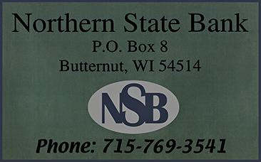 NorthernStateBank@0,25x.png