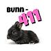 BUnn-411 (1).png