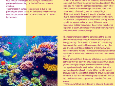Coral Reefs are Damaged due to Rising Temperatures & Degrees of Ocean Acidity
