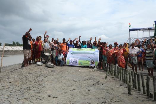 Mangrove plantation | One Tree Planted x Sustainable Green Initiative  | Sunderbans, West Bengal (2020)