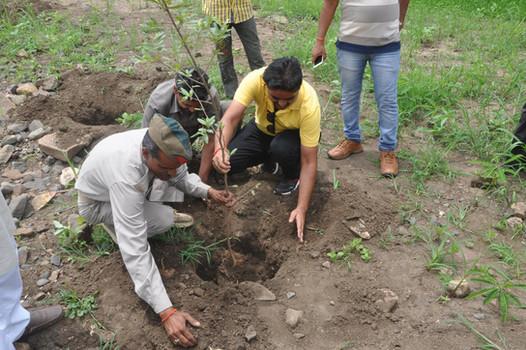 SGI x Bundelkhand Sewa Sansthan | Bundelkhand, Uttar Pradesh (2018)