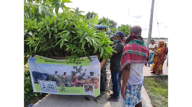 """One Million Fruit Trees"" | One Tree Planted x Sustainable Green Initiative  | Sunderbans, West Bengal (2020)"