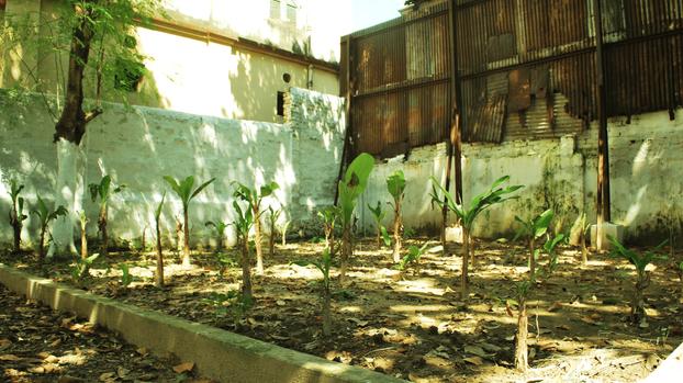 Mulvany House old age home x Inner Wheel Club, Kolkata (2013)