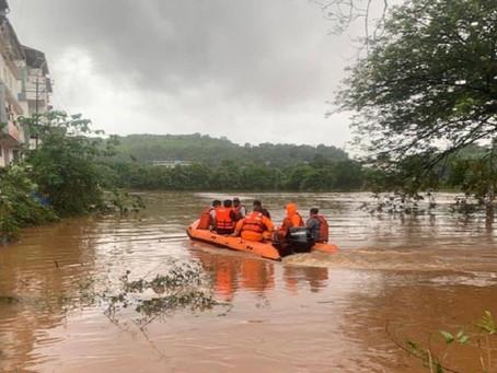 How do trees prevent flooding?