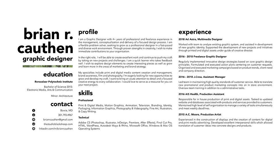 pdf portfolio3.jpg