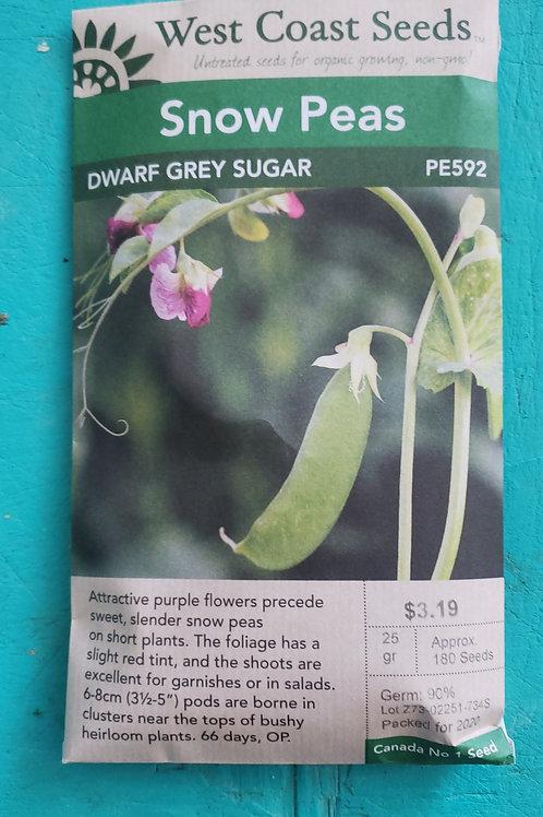 Dwarf Grey Sugar Peas