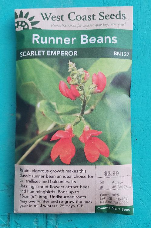 Scarlet Emperor Beans