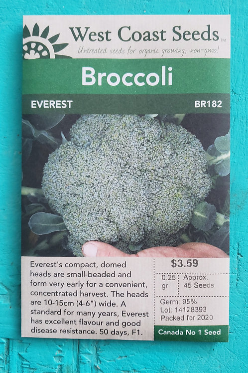 Everest F1 Broccoli