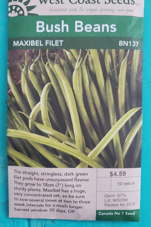 Maxibel Filet  Beans