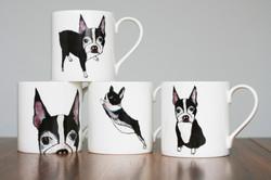 Boston Terrier Range ©Giddypup