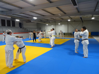 Cours jujitsu/Self-défense