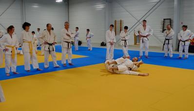 2019-01-26-Stages_jujitsu_et_ne_waza_à_O