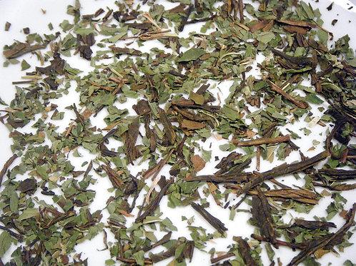 Organic Green Tea Mint