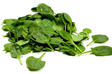 Spinach micro green