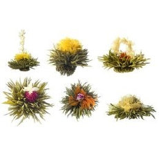Teaposy Quartet (4 teaposy blossoms)