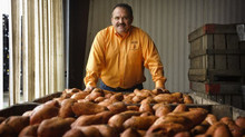 Columbus County businessman finds new ways to market homegrown sweet potatoes