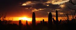 Sunset In Tucson.jpg