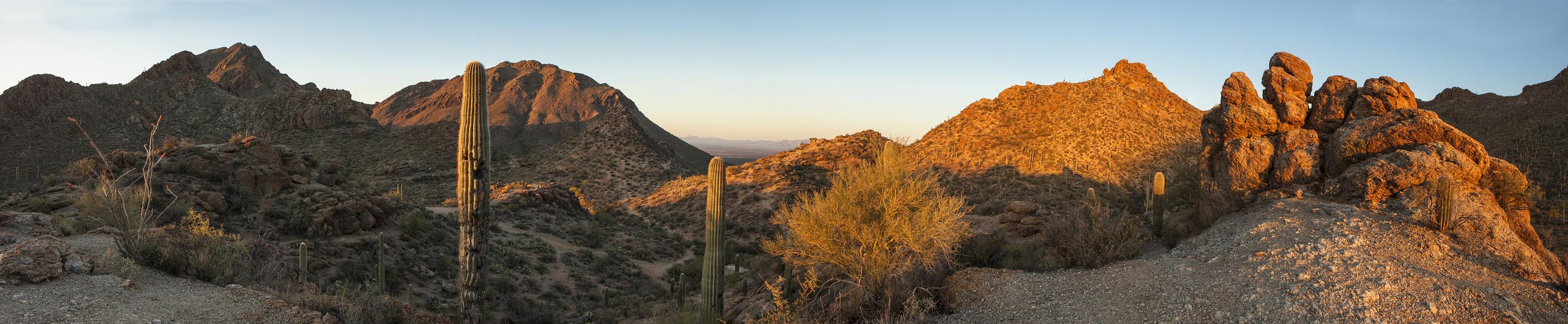 180 degree panorama of the sonoran desert in arizona.jpg