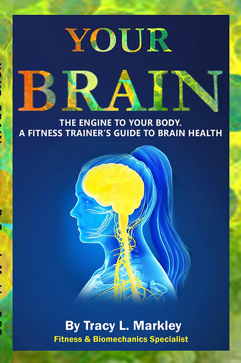 Your Brain, The Engine to Your Body