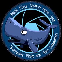 Logo Competition (diaphraga) transparent