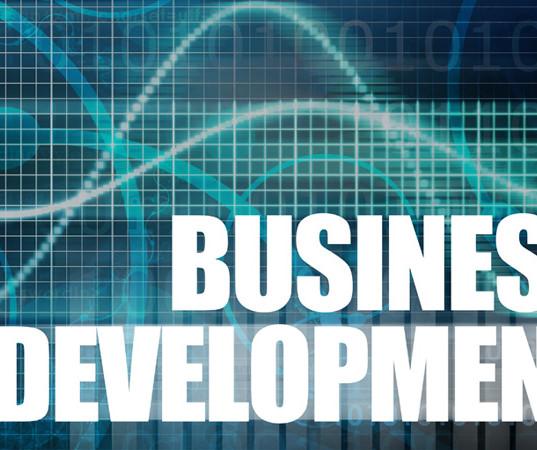 business-development-training_277441_lar
