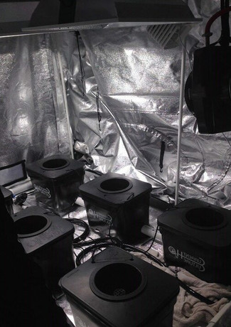 cultivationspace.com-9443004598226260 (1