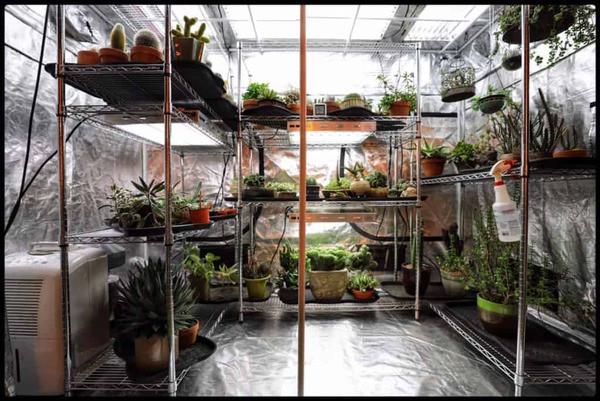 cultivationspace.com-9442901895088498.jp