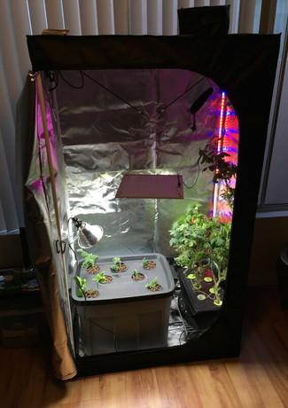 cultivationspace.com-9443088403460118.jp