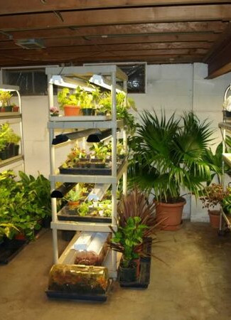 cultivationspace.com-9443012070029456.jp