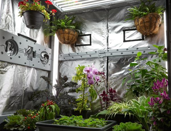 cultivationspace.com-9442958708649798.pn