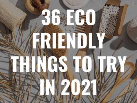 36 Eco Friendly Things to Try in 2021
