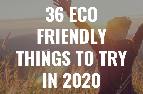 Forget Zero Waste Resolutions: Focus on These 12 Eco Friendly Areas in 2020
