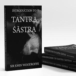 Tantra Sastra Forbidden Yoga